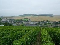 GR654 Walking from Bar-sur-Seine (Aube) to Irancy (Yonne)